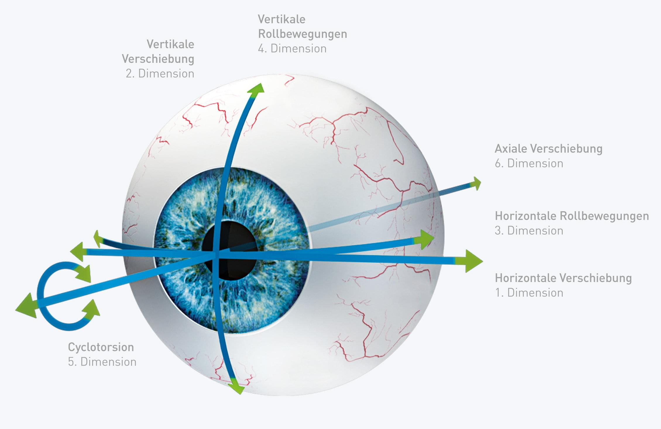Eye-model with visualizing of the six dimensions
